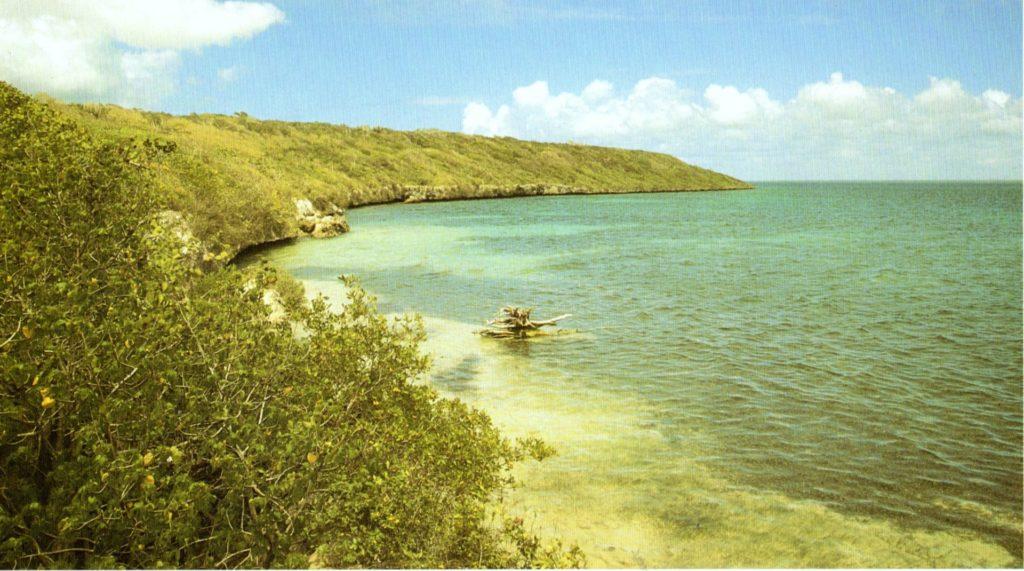 SAONA-Isla-Saona-Canal-Catuano  Saona-navi-1024x627  Saona-Cayo-Raton-1024x571