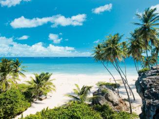 Guadalupa-isola-326x245