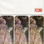 BIBLIOTECA-CNC-ICCC-Geo-Pistarino-733x1024  BIBLIOTECA-CNC-ICCC-Il-papa-Borgia-Oreste-Ferrara-De-Agostini-150x150