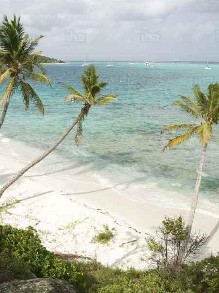 Guadeloupe-Sainte-marie-capesterre-belle-eau